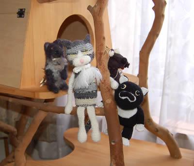 cats644.jpg