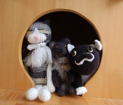cats645.jpg