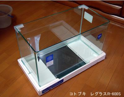 新しい水槽(コトブキ レグラスR-600S)