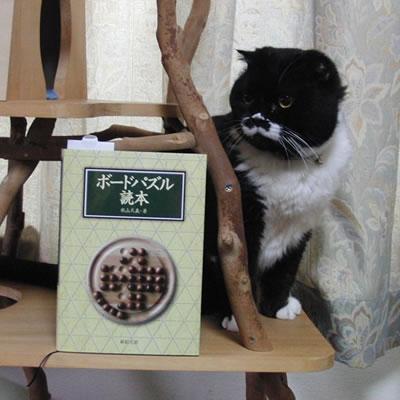 ボードパズル読本
