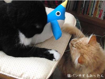 おもちゃに猫パンチするみったん