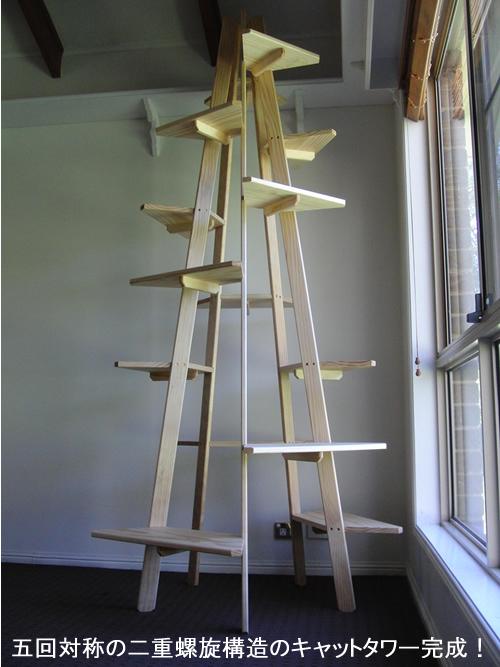 五回対称の二重螺旋構造のキャットタワー完成!