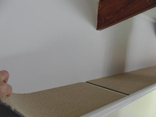 全てのキャットウォークを壁に取り付け、最後にカーペットを敷いた