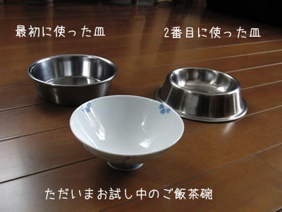食べやすいお皿をされこれ試し、現在はご飯茶碗をお試し中