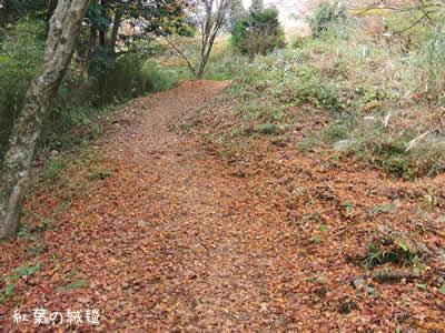 紅葉の絨毯を踏みしめ浅間山へ向かう