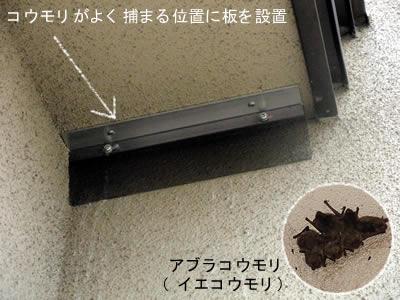 コウモリがよくとまる軒下にツルツルした板を設置