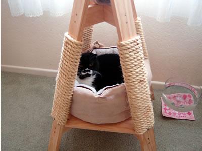 爪とぎの中の猫ベッド
