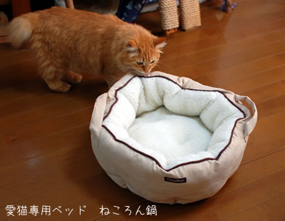 新しく買った猫ベッド