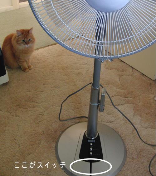 みったんと扇風機
