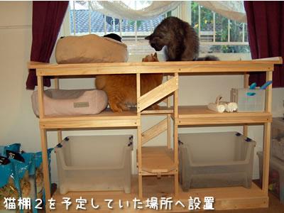 予定していた設置場所へ猫棚2を移動、棚の最上段は窓の高さと同じになるようにした