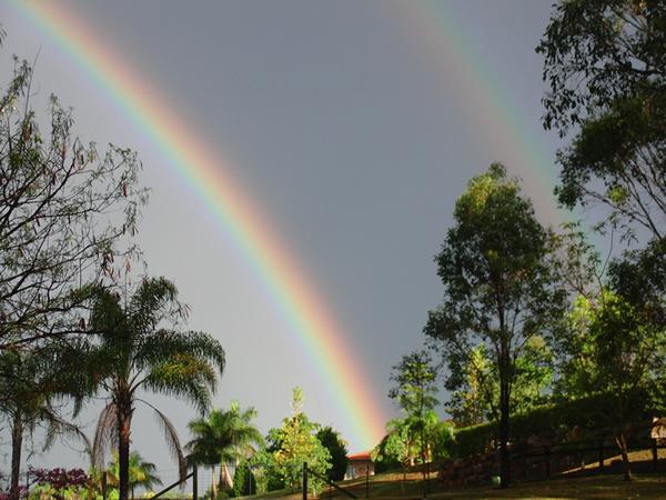 嵐の後の虹