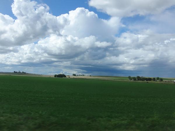 広がる牧草地帯と遠くの雨雲