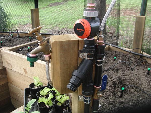 ベジパッチ内の給水システム