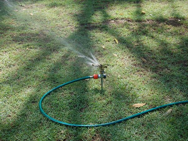 芝に水まき