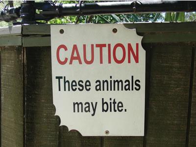 「噛みつくので注意」のおもしろい看板