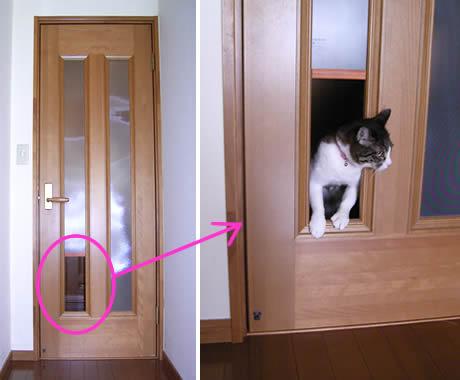 我家に猫がやってきた 猫の出入...