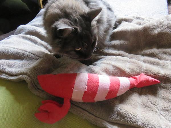 Moko and stuffed doll